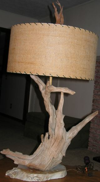 Driftwood Lamp photo