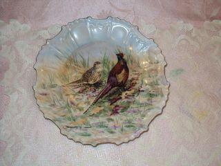 Hand Painted Pheasant Plate 8 1/2  X 8 1/2  Signed By Louise Fernandez No Chip photo