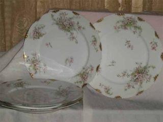 Five Antique Haviland Limoges Dinner Plates 1903 - 1925 Apple Blossom Tiny Chips photo
