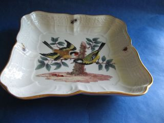 Meissen Autenticity Guarante Charger 1860 Birds Insects Rare Nr.  1 photo