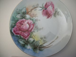 Signed Bavaria Tirschenreuth Porcelain Hand Painted Roses Plate photo