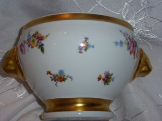 Gorgeous Porcelain Bowl Vase Cerabel Made In Belgium photo