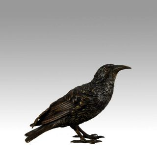 Antique Vienna Bronze ' Starling ' By Franz Bergman photo