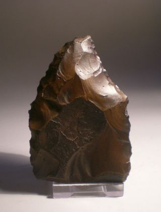 Xxx Paleolithic Acheulian Handaxe / Tool / Scraper / Biface Xxx photo