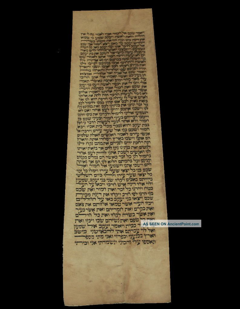 Torah Scroll Bible Vellum Manuscript Fragment Judaica 200 Yrs Iraq Other photo