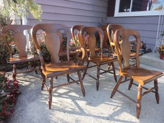 Tell City Rumford 8 Balloon Back Dining Chairs + Table Excellent Ships Indpls photo