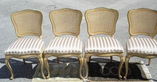 Set Of 4 Antique Louis Xvi Cane Back Dining Chairs Chair Dixon Powdermaker Usa photo