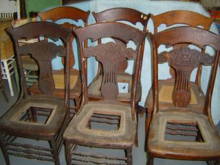 6 Matching Oak Pressed Back Chairs - Early 1900 ' S - Northwind Face photo