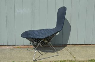 Mid - Century Modern Bertoia Bird Lounge Chair Vintage Knoll Eames Baughman photo
