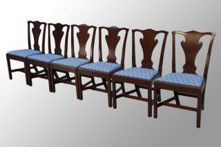 15703 Antique Set Of Six Chippendale Period Country Dining Chairs photo