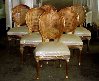 6 Lg.  French Gilt Cane Caned Louis Xvi Style Dining Chairs photo