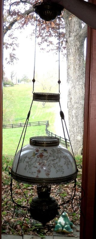 Antique Miller Meteor Brass Hanging Parlor Lamp Butterfly Painted Glass Shade photo
