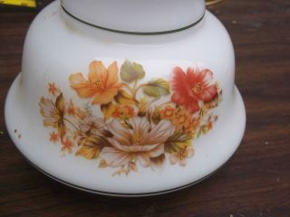 Floral Painted Antique Lamp Chimney photo