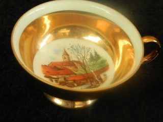 Vintage Eigl Austria Small Souvenir Cup Furstenfeld Fantastic Art Work photo