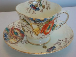 Vintage Aynsley Poppies Poppy Teacup Tea Cup And Saucer photo