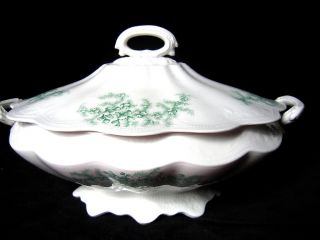 Antique China Covered Soup Tureen Maidenhair Ferns photo