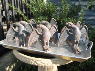 Six 6 Antique Snow Birds Snow Guards Architectural Salvage Cast Iron Eagles photo