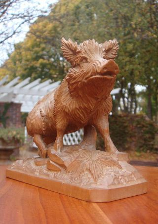 Old Carved Wood/carving/woodcarving Boar Sculpture - Brienz/black Forest - Blatter photo