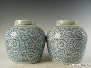 Pair Chinese Blue White Porcelain Ginger Jar 9