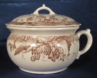 Antique Chamber Pot - Johnson Brothers,  England - Hop Design photo
