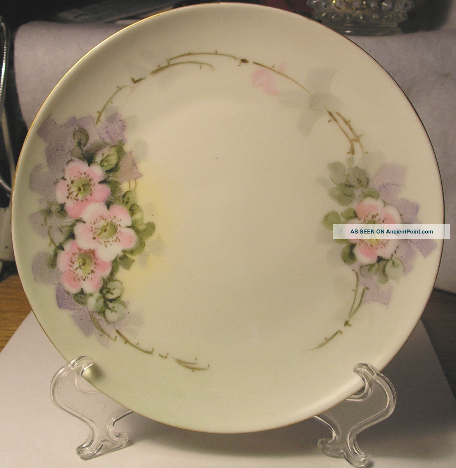 Small C1900 Krautheim Bavaria Porcelain Plate Hand Painted Wild Roses - Exc.  Cnd Plates & Chargers photo
