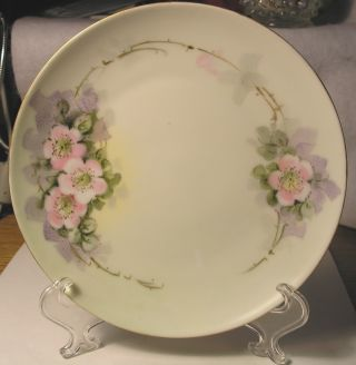 Small C1900 Krautheim Bavaria Porcelain Plate Hand Painted Wild Roses - Exc.  Cnd photo