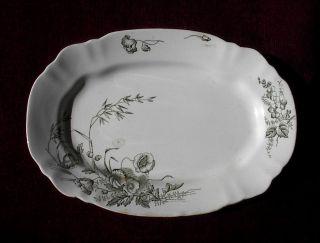 C 1891 John Edwards Porcelain ' Harvest ' Design 12