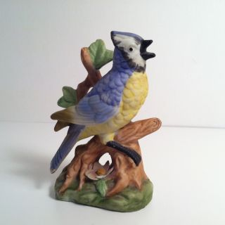Vintage Japan Porcelain Ceramic Pottery Bird Blue Jay Figurine Ucgc photo