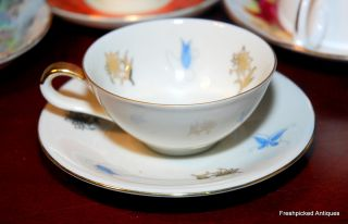 Z & Co Tirschenreuth Bavaria Floral Decorated Tea Cup And Saucer Sale photo