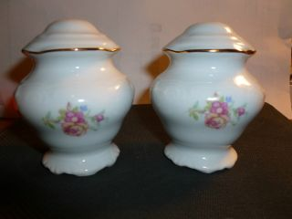 Vintage Wawel China Poland Floral Pattern And Rose Salt And Pepper Shakers photo
