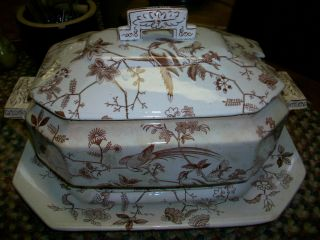1850 - 1880 Brown Transferware Orient Davenport England Tureen With Platter photo