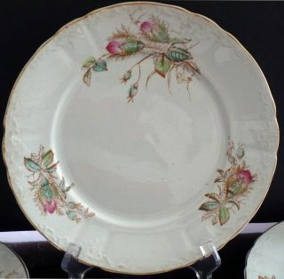 8 Plates Marked Imperial Ironstone Moss Rose Quite Rare Lovely Coloration Design photo