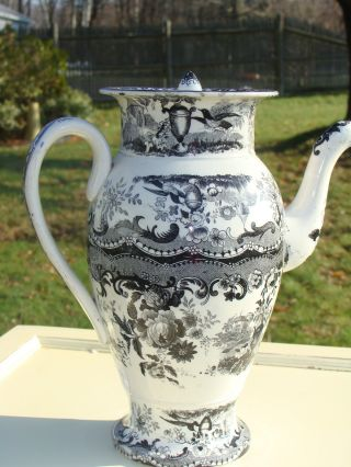 Creamware Coffee Pot Black And White Transfer Flowers Urns & Buildings L@@k photo