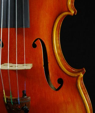 Marvelous Italian Violin By Stephano Pacchiarini C.  1998 4/4 Old Antique.  Violino photo