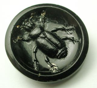 Antique Black Glass Button Beetle Insect Pictorial Design photo