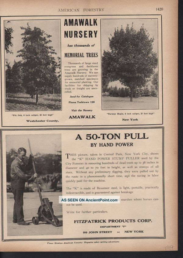 Fp 1919 Amawalk Tree Nursery Fitzpatrick Stump Puller Machine Outdoor Tools Ad Other photo