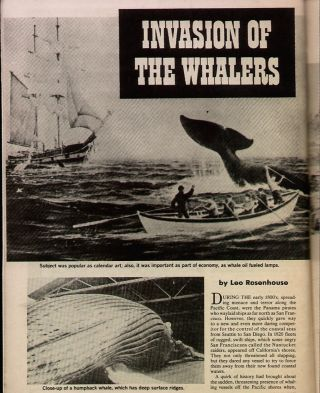 Invasion Of The Whalers+ships Alert,  Almira,  Gideon,  Ploughboy,  Sausalito Station photo