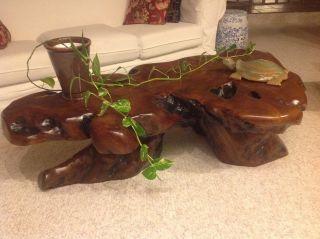 Solid Redwood Burl Coffee Table 60