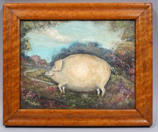 Antique American Folk Art Farm Prized Show Pig Oil Painting Tiger Maple Frame photo