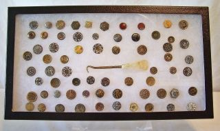 Antique High Victorian Button Collection 65 In All Brass,  Copper,  Silver & Gold photo