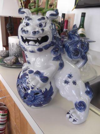Antique 19thc Large Chinese Porcelain Cobalt Blue Foo Dog Lion Exquisite photo