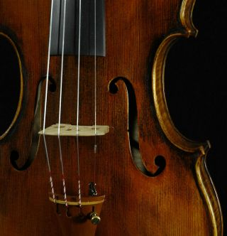 Fine Italian Violin Labeled Gustavo Belli C.  2004 4/4 Old Antique Model.  Violino photo