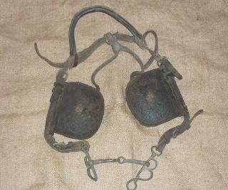 Old Leather Horse Bridle Blinders W/brass Rose Pins,  Bit Etc photo