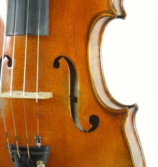 Fascinating Italian Violin By Nicola Ponti C.  1998 4/4 Old Antique.  Violino photo
