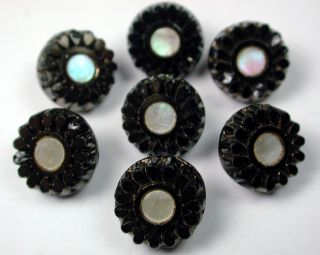 Antique Black Glass Buttons Set Of 7 Iridescent Shell In Flower Mold - Lovely photo