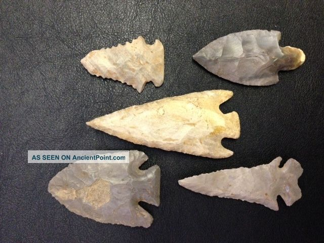 Authentic Dovetail,  Lost Lake,  Adena,  Pinetree & Buck Creek Arrowheads Native American photo