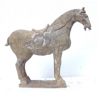 41 - 19: Big Stunning Strong Pottery T - Ang Horse Statue photo