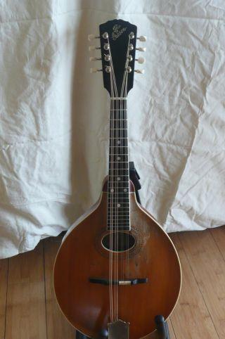 Gibson Mandolin Circa 1915 photo