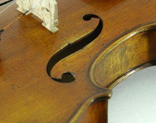 Sublime Italian Violin By Stephano Pacchiarini C.  2001 4/4 Old Antique Violino photo