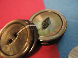 Antique Button Lot Vintage Mother Of Pearl Old Sewing Estate M.  O.  P. photo